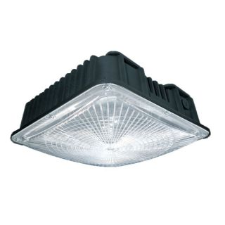 Colshine slim LED Canopy Lights | Gas Station LED Lighting‎